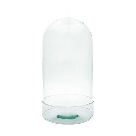Glass dome W-315E1+cylinder H:40cm D:20cm